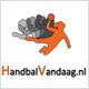 logo handbalvandaag